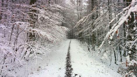 winterbike_schnee