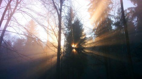 winterbike_nebel